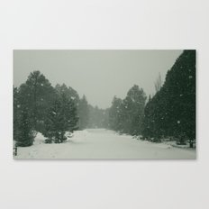 snow. Canvas Print