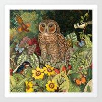 Owl Garden Art Print