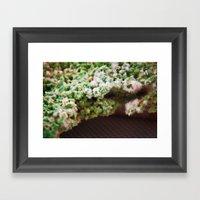 upper crust III Framed Art Print