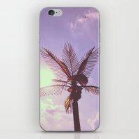 Palm Plane iPhone & iPod Skin