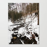 Downhill Stream  Canvas Print
