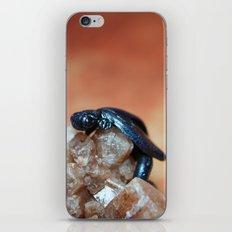 Metallic Blue and Black Dragon on Quartz Crystal iPhone & iPod Skin