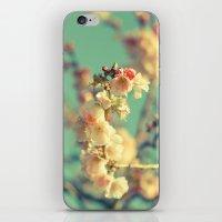 Pink blue blossom iPhone & iPod Skin