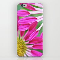 Entwined iPhone & iPod Skin