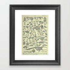 Skeletons Framed Art Print