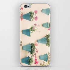 Flowerpots iPhone & iPod Skin