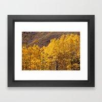 Golden Aspens Near Maroo… Framed Art Print