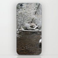 South Willowbrook iPhone & iPod Skin