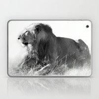 Lion In The Sunshine Laptop & iPad Skin