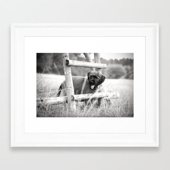 little adventurer - puppy dog Framed Art Print
