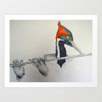 fluter Art Print