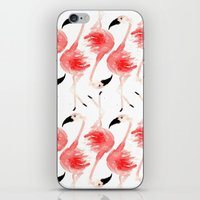 Flamingos! iPhone & iPod Skin