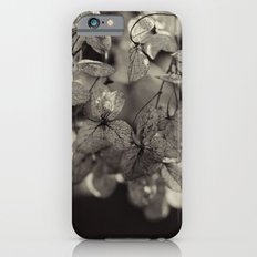Winter Flowers iPhone 6 Slim Case