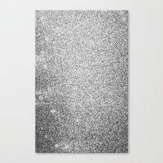 Metallic (Silver) Canvas Print