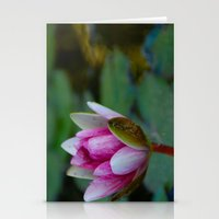 Water Lily 6 Stationery Cards