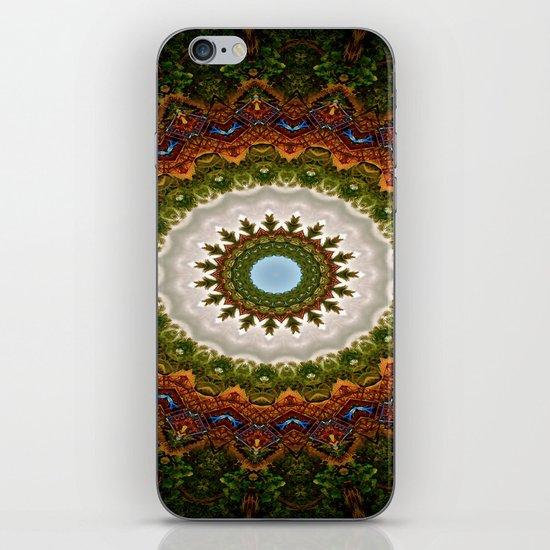 taste of indian flavor iPhone & iPod Skin