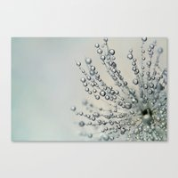 Fairy Dust Droplets Canvas Print