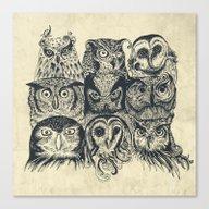 Canvas Print featuring Nine Owls by Rachel Caldwell