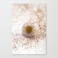 DAISY GOLD - for Mackenzie Canvas Print
