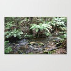 Stream inside the Otway Ranges  Canvas Print