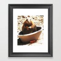 A Bowl Of Groundhog And … Framed Art Print
