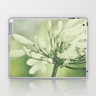 Just Breathe... Laptop & iPad Skin