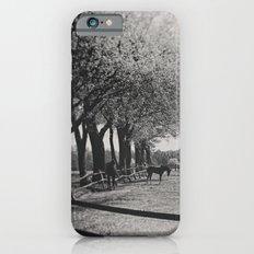 Horses iPhone 6s Slim Case