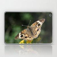 Common Buckeye Laptop & iPad Skin
