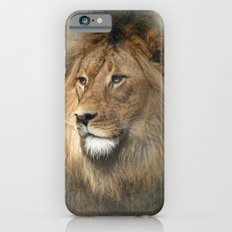 African Dreaming iPhone 6 Slim Case