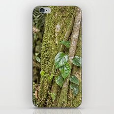 Vine And Moss On Tree In… iPhone & iPod Skin