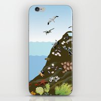 Southern California Tide Pool Explorer's Guide iPhone & iPod Skin