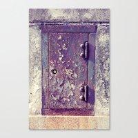 little door Canvas Print