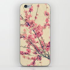 Cherry Pink Spring Blossoms of Ornamental Peach Tree iPhone & iPod Skin