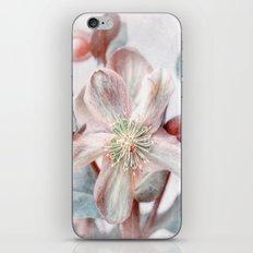 winter blossom iPhone & iPod Skin