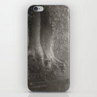 River Mist iPhone & iPod Skin