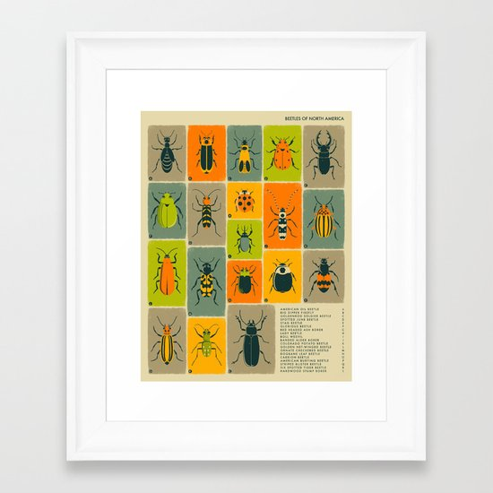 BEETLES OF NORTH AMERICA Framed Art Print