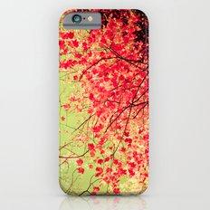 Color Drama II iPhone 6 Slim Case