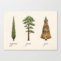 Fur Tree Canvas Print