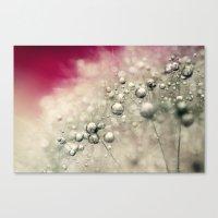 Cherry Dandy Drops Canvas Print