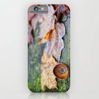 iPhone & iPod Case featuring Shaking down the acorns by Wood-n-Images