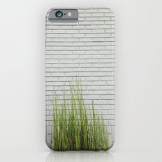 Green on White iPhone 6s Slim Case