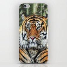 panthera tigris II iPhone & iPod Skin