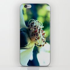 Disheveled flower iPhone & iPod Skin