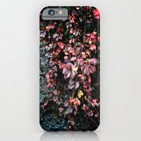 Red Leaf iPhone 6 Slim Case