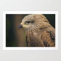 Power Bird I Art Print