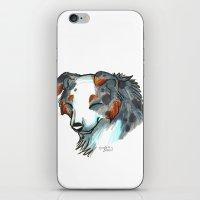 Brush Breeds-Australian Shepherd iPhone & iPod Skin