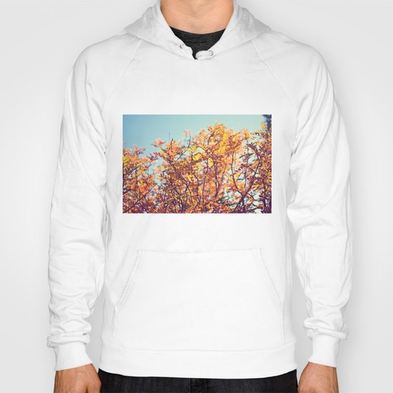 Mountain Fall Hoody