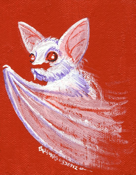 White Bat Art Print