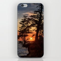 Sunset through the Trees iPhone & iPod Skin