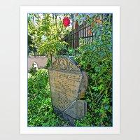 Civil War Rose Art Print
